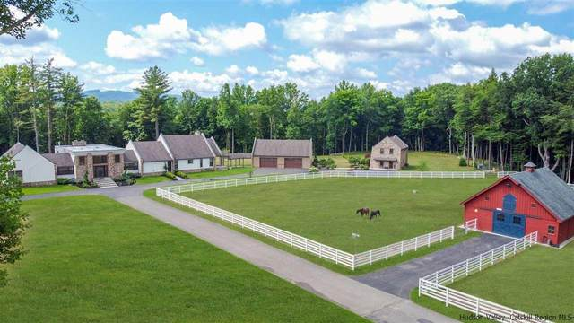 1955 Lucas Turnpike, High Falls, NY 12440 (MLS #20212291) :: The Clement, Brooks & Safier Team