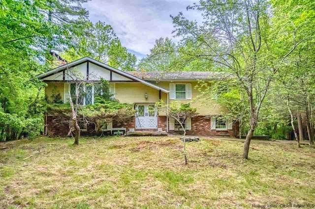 45 Upper West Ohayo Mountain Road, Bearsville, NY 12498 (MLS #20212298) :: Barbara Carter Team