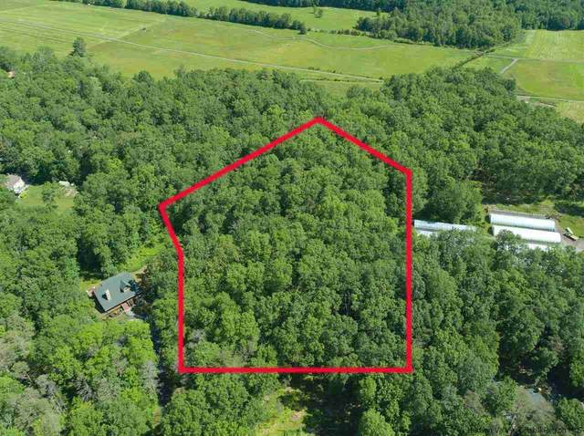 TBD Rte 299 W, New Paltz, NY 12561 (MLS #20212325) :: The Clement, Brooks & Safier Team