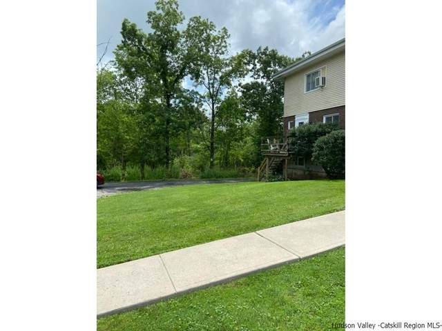881 Albany Post Road, New Paltz, NY 12561 (MLS #20212668) :: The Clement, Brooks & Safier Team