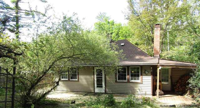 29 Van Dale Road, Woodstock, NY 12498 (MLS #20213557) :: Barbara Carter Team