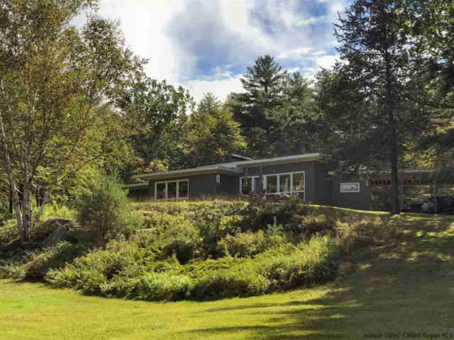 44 High Rocks Road, Woodstock, NY 12498 (MLS #20183979) :: Stevens Realty Group
