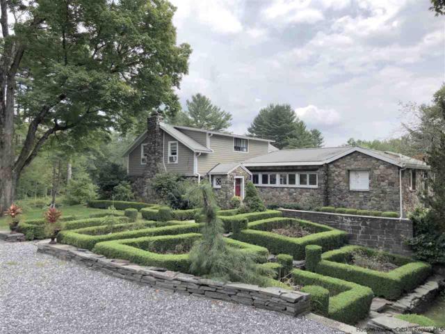 496 John Joy Road, Woodstock, NY 12498 (MLS #20184068) :: Stevens Realty Group