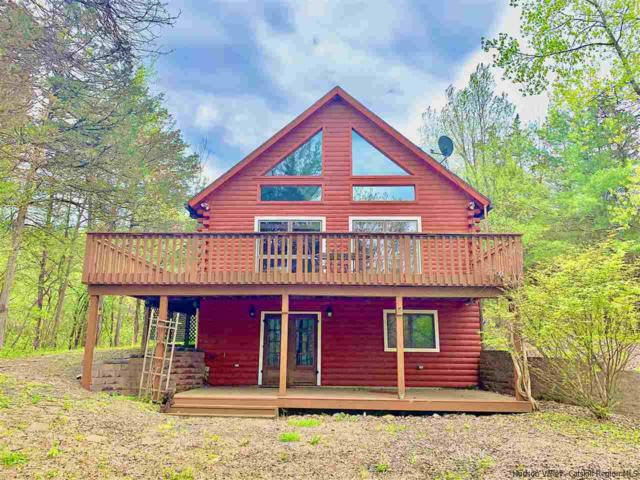 6 Andre Ct, Coxsackie, NY 12051 (MLS #20191719) :: Stevens Realty Group