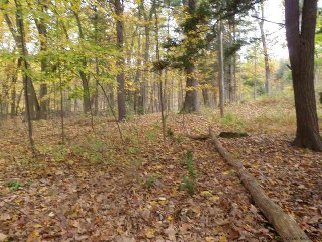 TBD Lot 4 Degraff, Rosendale, NY 12472 (MLS #20210493) :: Barbara Carter Team