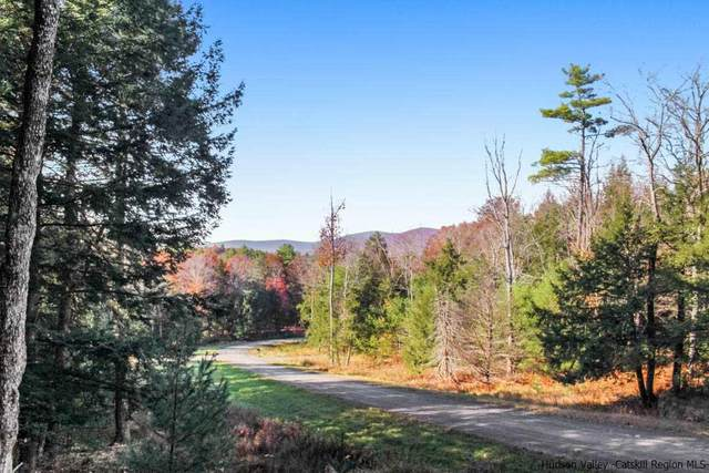50 Mill Rock, Accord, NY 12404 (MLS #20211510) :: The Clement, Brooks & Safier Team