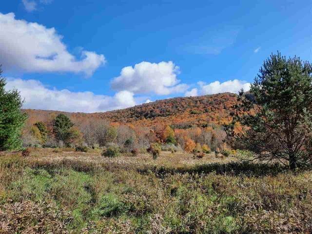 TBD Old Gladstone Hollow, Andes, NY 13731 (MLS #20213927) :: Barbara Carter Team