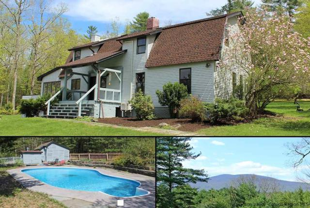 295 Lower Sahler Mill Road, Olivebridge, NY 12461 (MLS #20181699) :: Stevens Realty Group