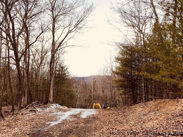 LOT 1 Brink Road, Saugerties, NY 12477 (MLS #20181952) :: Stevens Realty Group