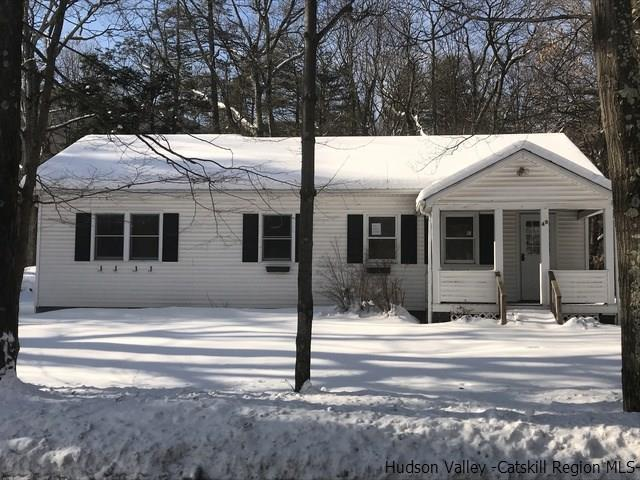 49 Manorville Road, Saugerties, NY 12477 (MLS #20190376) :: Stevens Realty Group