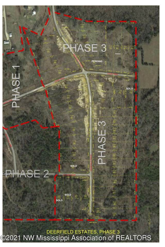 54 Deerfield Trace - Photo 1