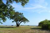 1598 Beach Boulevard - Photo 2