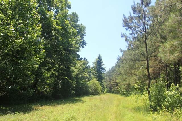 395 N Red Banks Road, Red Banks, MS 38661 (MLS #2330930) :: Gowen Property Group   Keller Williams Realty