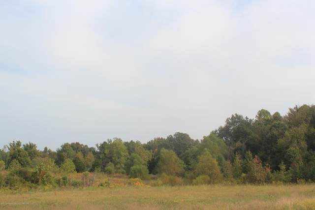 0 Highway 305, Olive Branch, MS 38654 (MLS #2331996) :: Gowen Property Group   Keller Williams Realty