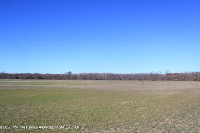 3300 Watson Desoto Road, Byhalia, MS 38611 (MLS #2333004) :: Gowen Property Group | Keller Williams Realty