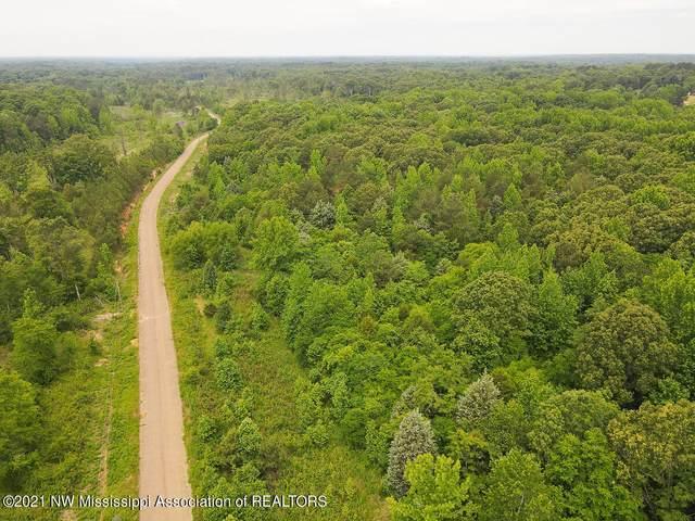 95 Poplar Lane, Red Banks, MS 38661 (MLS #2334739) :: Your New Home Key