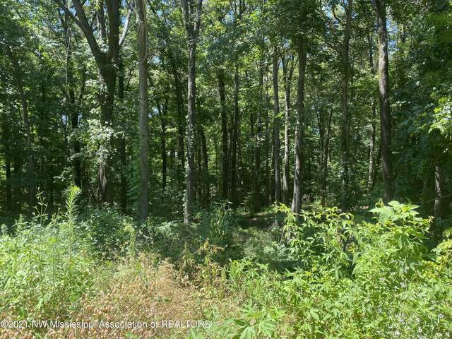 3 Michael Drive, Lake Cormorant, MS 38641 (MLS #2336144) :: Burch Realty Group, LLC