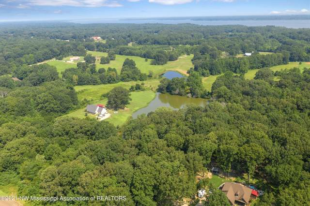 6 Cherrydale Ave, Coldwater, MS 38618 (MLS #2336963) :: Burch Realty Group, LLC