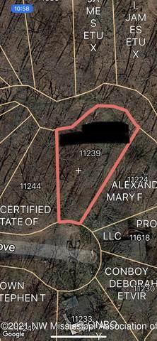 11239 Loch Katrine Cove, Hernando, MS 38632 (MLS #2337287) :: Burch Realty Group, LLC