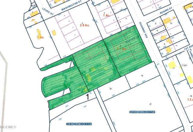 16053 Baxter Lane, Pearlington, MS 39572 (MLS #3371405) :: The Demoran Group at Keller Williams