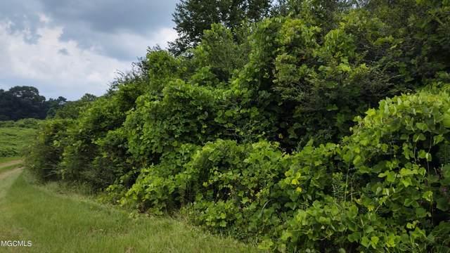 0 Gentle Bend Street, Lumberton, MS 39455 (MLS #3378364) :: Berkshire Hathaway HomeServices Shaw Properties