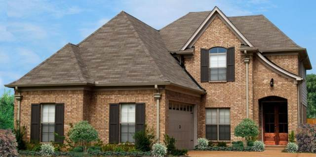 5066 Watson View Drive, Nesbit, MS 38651 (MLS #4000109) :: Your New Home Key