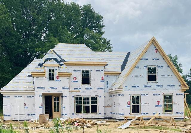 910 Llyods Lane, Nesbit, MS 38651 (MLS #4000482) :: Burch Realty Group, LLC