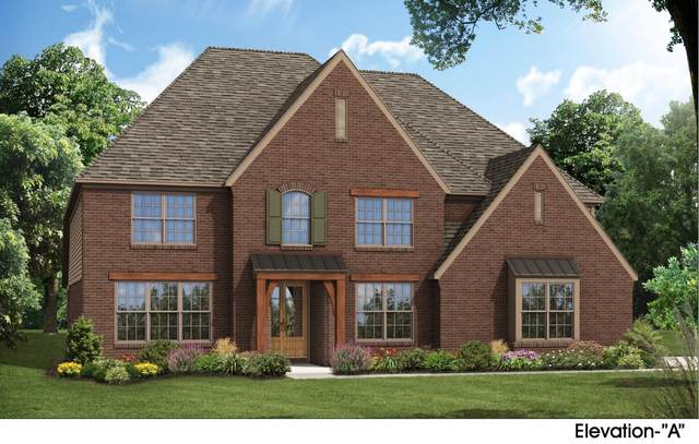 13824 River Grove Ln, Olive Branch, MS 38654 (MLS #4000496) :: Your New Home Key