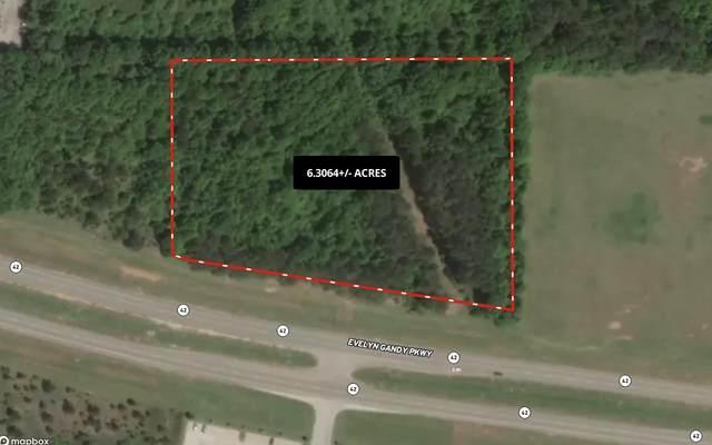 0 Evelyn Gandy Parkway, Petal, MS 39465 (MLS #4000531) :: Dunbar Real Estate Inc.