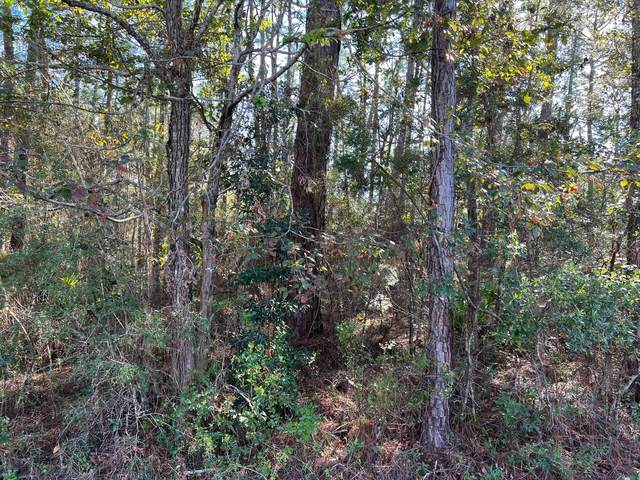 0 Red Bud Way, Pass Christian, MS 39571 (MLS #4000557) :: The Sherman Group