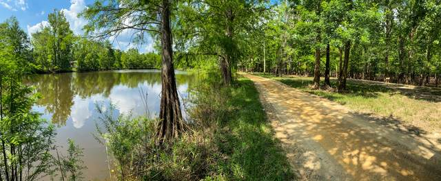 33-36 Beaver Dam Ext, Lucedale, MS 39452 (MLS #4000617) :: Berkshire Hathaway HomeServices Shaw Properties