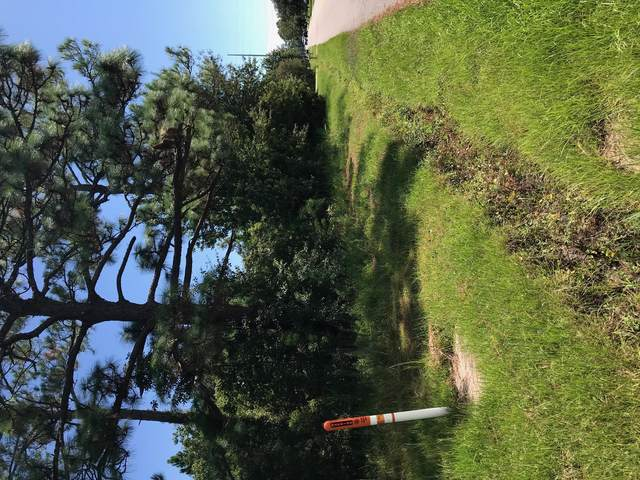 00 Nicholson Avenue, Waveland, MS 39576 (MLS #4000663) :: Coastal Realty Group
