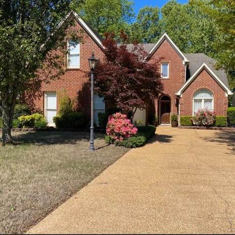 6297 Cheyenne Drive, Olive Branch, MS 38654 (MLS #4000682) :: Signature Realty