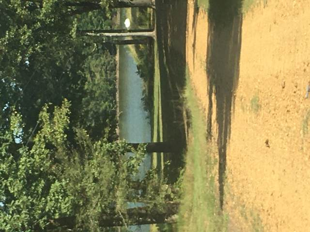 673 Glenville Road, Como, MS 38619 (MLS #4000743) :: Your New Home Key
