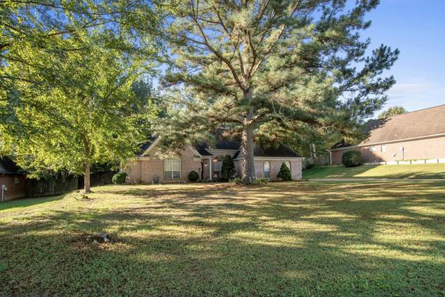 10243 Lazy Creek Drive, Olive Branch, MS 38654 (MLS #4000784) :: Signature Realty