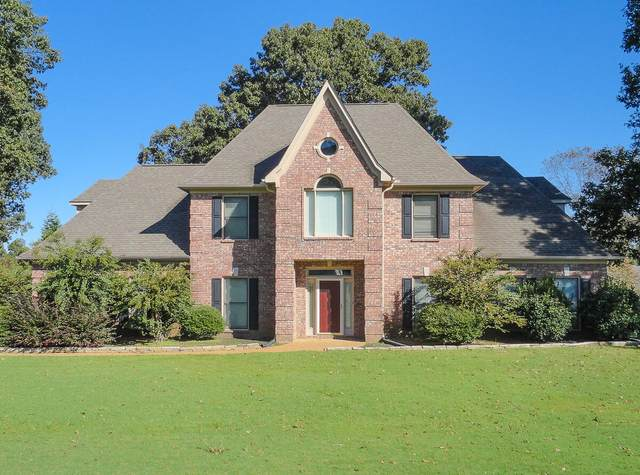 4926 Bobo Place, Olive Branch, MS 38654 (MLS #4000793) :: Signature Realty