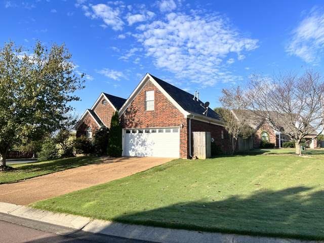 6021 Stafford Drive, Southaven, MS 38671 (MLS #4000969) :: Your New Home Key