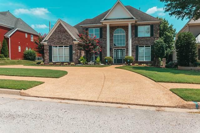 6651 Moondance Drive, Olive Branch, MS 38654 (MLS #4000989) :: Gowen Property Group | Keller Williams Realty