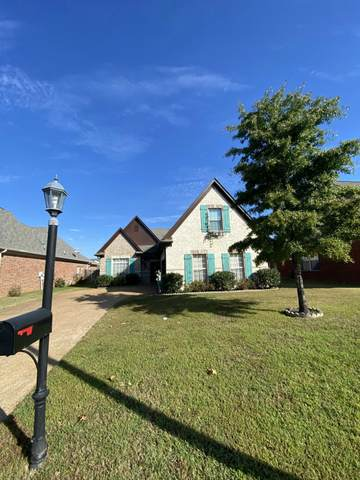968 Classic Cove, Hernando, MS 38632 (MLS #4001120) :: Your New Home Key
