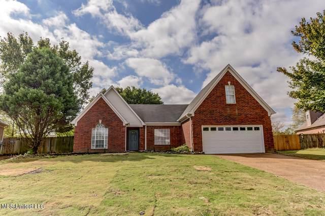 9909 Conrad Dr Drive, Olive Branch, MS 38654 (MLS #4001314) :: Signature Realty