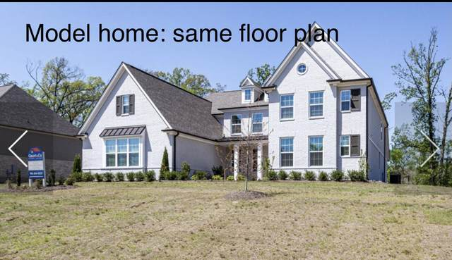 13762 River Grove Ln, Olive Branch, MS 38654 (MLS #4000607) :: Your New Home Key