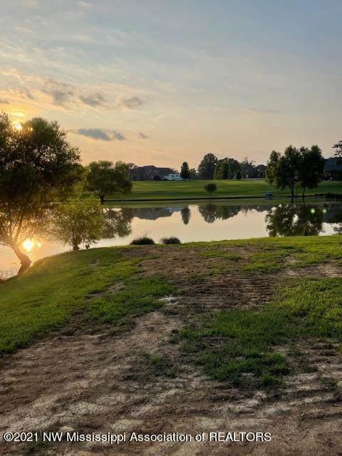 166 Oak Ridge Lakes Drive, Coldwater, MS 38618 (MLS #2336874) :: Burch Realty Group, LLC