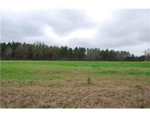Lot 1 Oak Drive, Perkinston, MS 39573 (MLS #3249359) :: Berkshire Hathaway HomeServices Shaw Properties