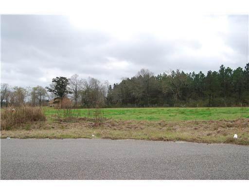 Lot 2 Oak Drive, Perkinston, MS 39573 (MLS #3249395) :: Berkshire Hathaway HomeServices Shaw Properties