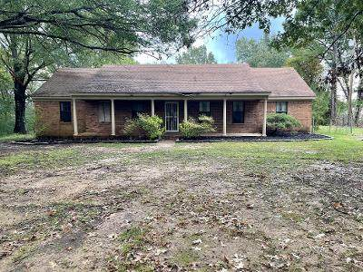 1472 Antioch Road, Coldwater, MS 38618 (MLS #4000774) :: The Live Love Desoto Group