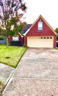 9005 Ontario Drive, Olive Branch, MS 38654 (MLS #4000883) :: Burch Realty Group, LLC