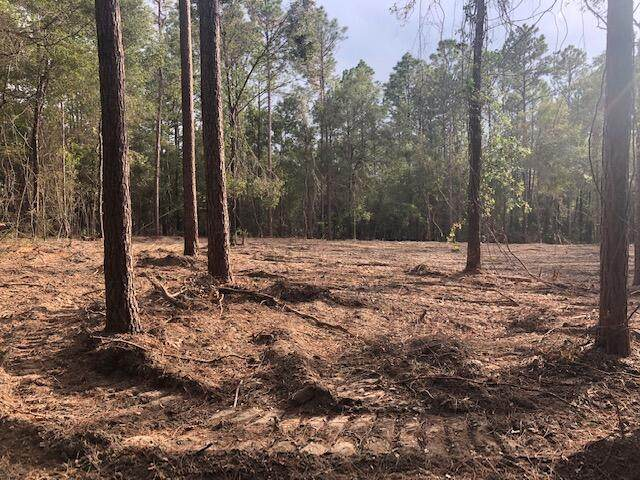 Amber Lane, Lucedale, MS 39452 (MLS #4001007) :: The Sherman Group