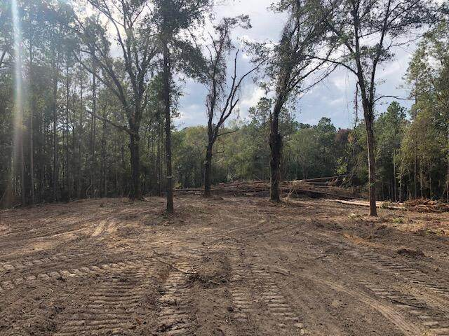 Amber Lane, Lucedale, MS 39452 (MLS #4001010) :: The Sherman Group