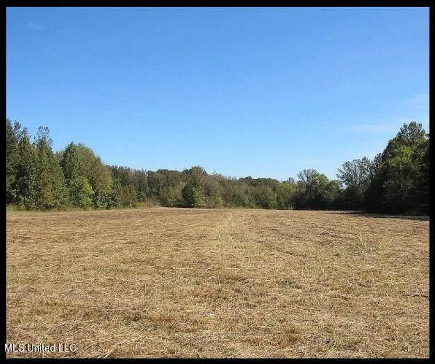 500 Hernderson Road, Batesville, MS 38606 (MLS #4001435) :: The Home Gurus, Keller Williams Realty