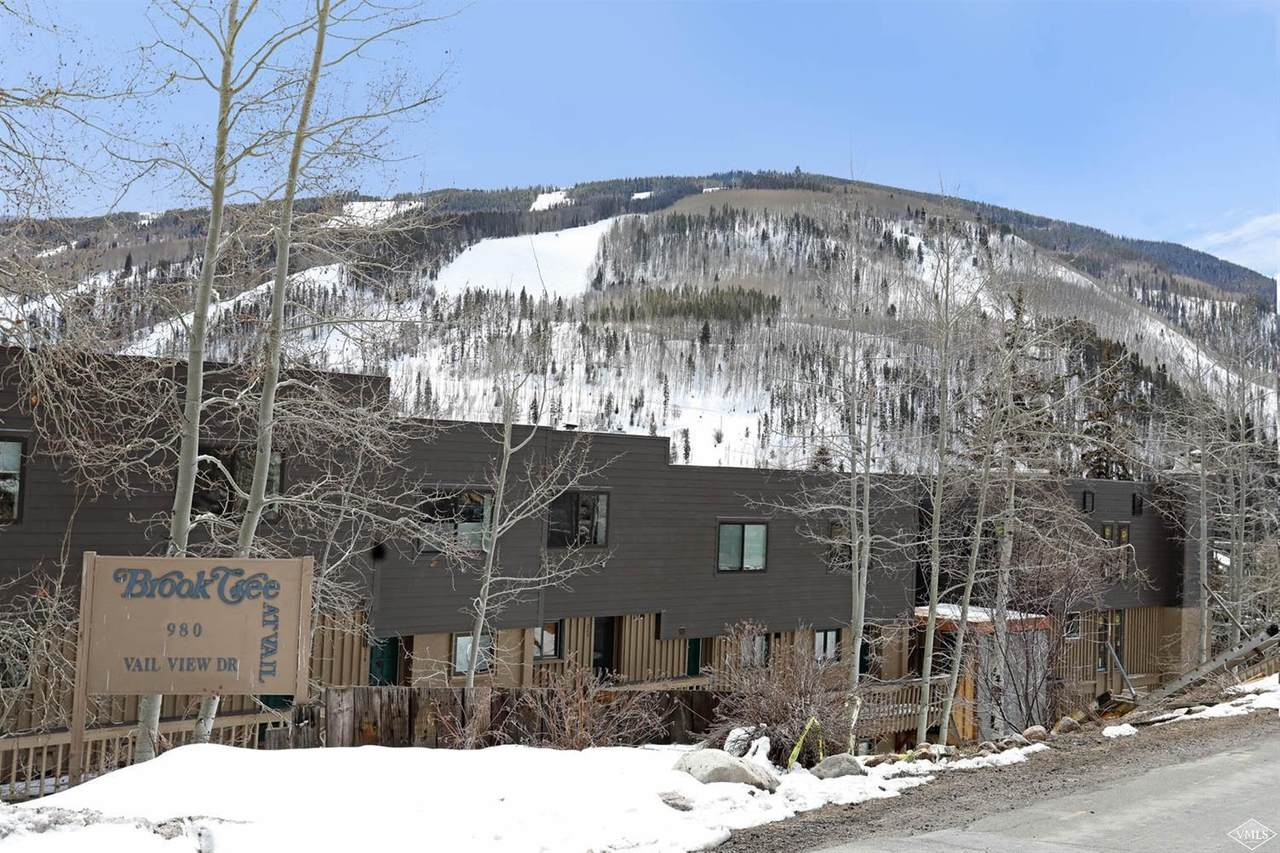 980 Vail View Drive - Photo 1